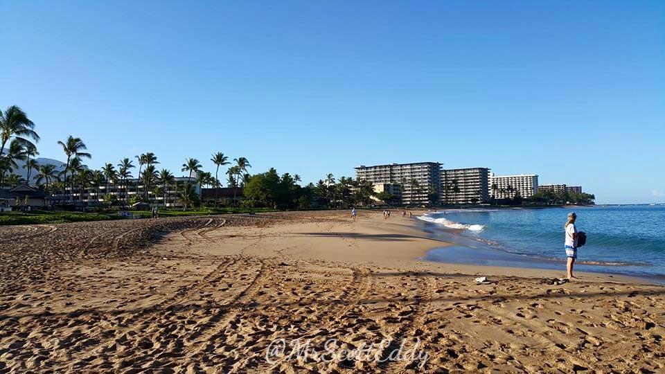 mrscotteddy-maui-hawaii-trip-beach-9