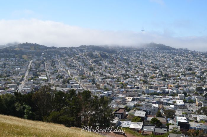 mr-scott-eddy-life-in-san-francisco-26