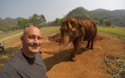 Visiting Elephant Nature Park in Chiang Mai, Thailand
